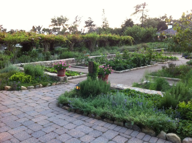Lessons from a Vegetable Garden