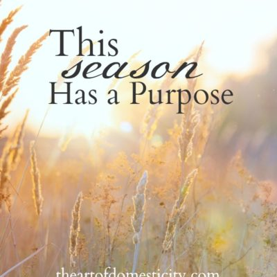 This Season Has a Purpose