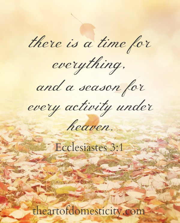 As we enter a new school season and Fall slowly shows its colors there are so many emotions! We will experience a lot of seasons in our lifetime; some will be filled with joy and anticipation, others with longing or sadness, testing of our faith. Our job is to live in God's presence through every season...