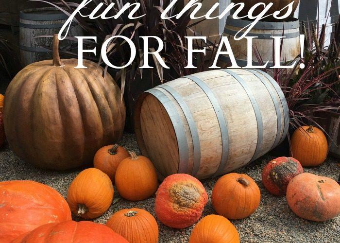 My Favorite Fun Things for Fall!