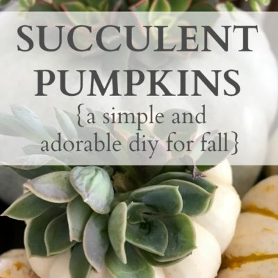 Succulent Pumpkins {a simple and adorable diy for fall}
