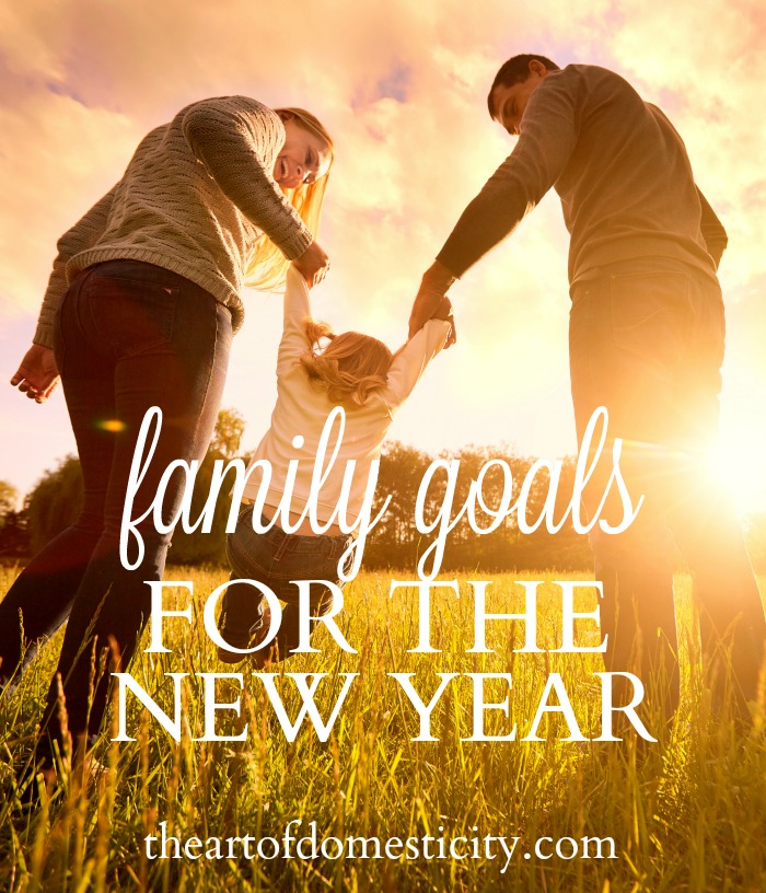 Although most people think of diets, organization, and spending habits when they're setting goals and resolutions, the New Year is actually a perfect time to reassess what's working or not working in the areas of parenting and family. Spending some time asking ourselves hard questions, thinking honestly about problem areas, and establishing realistic priorities can reap tangible benefits for our families in 2017.  Here are some general categories to consider...