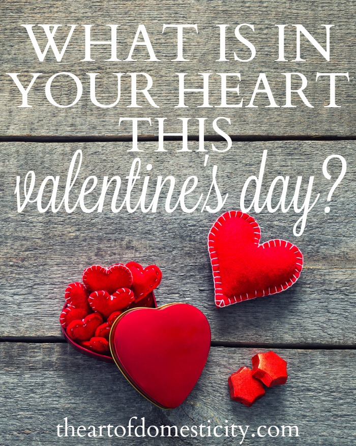 Valentine's Day is the perfect day to talk about hearts.  If we don't guard our hearts from chasing everything that awakens our interest, it will be a surefire way to distract us from God's best. What is in your heart this Valentine's Day?