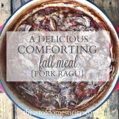 A Delicious Comforting Fall Meal {Pork Ragu}
