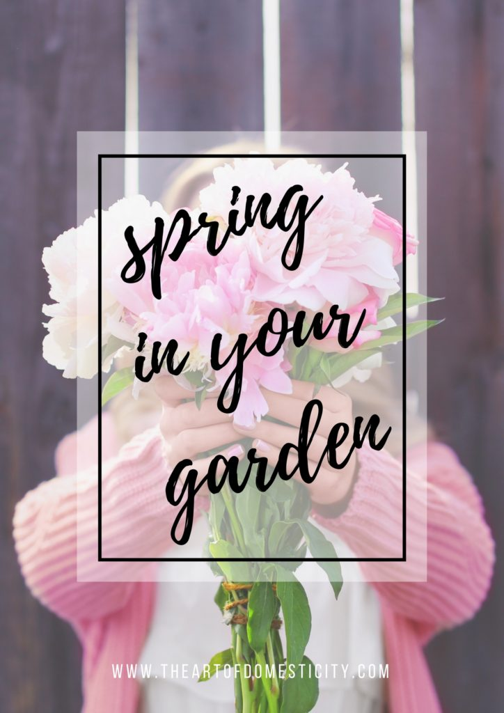 By planning and executing your garden re-design in spring, it is possible to extend the time you spend in the garden, cooking, eating and entertaining while encouraging wildlife to thrive, as well as increasing the value of your property.