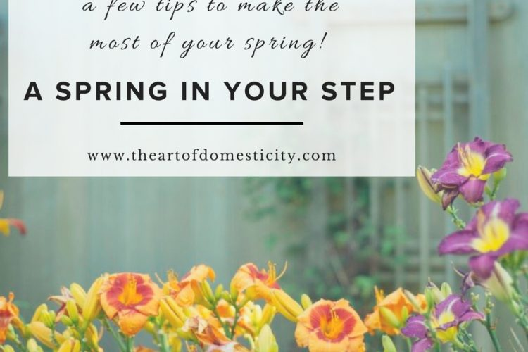A Spring in Your Step {a few tips to make the most of your spring!}