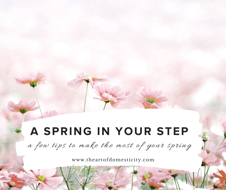 Spring time is the perfect time to take an inventory of your home and do a little cleaning and preparing for the months ahead! Here are a few of my tips to get you started!